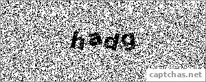 The Captcha image